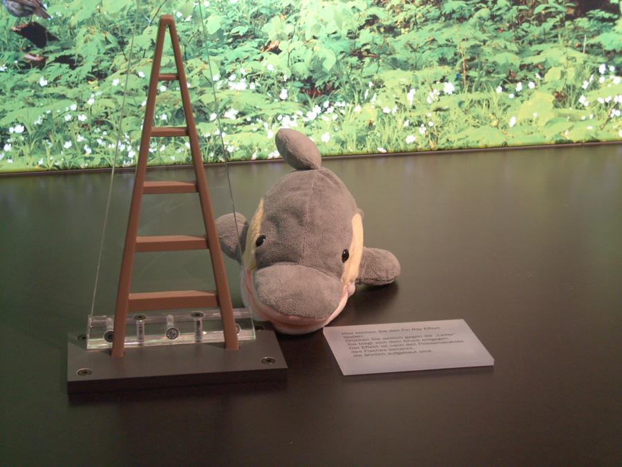 FINN in der Bionik-Ausstellung (Foto: Susanne Gugeler)