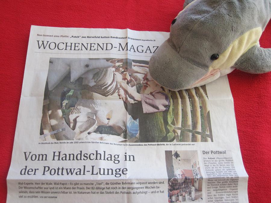 Finn sieht Günther in der Zeitung (Foto: Susanne Gugeler)