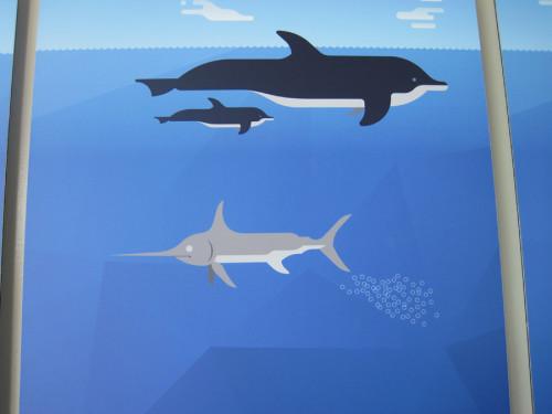 Unterschiede bei der Geburt (Informationstafel im Aquarium Genua)