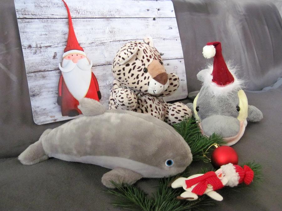 Weihnachtliche Stimmung bei Antje, Leo und Finn (Foto: Susanne Gugeler)