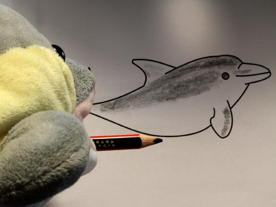 FINN zeichnet einen Delfin. (Foto: Rüdiger Hengl)